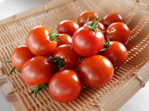 ミニ・トマト